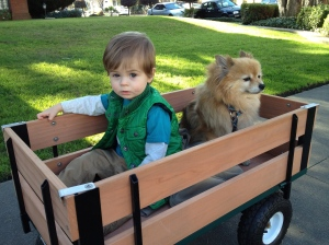 Thad & Jupi in the wagon